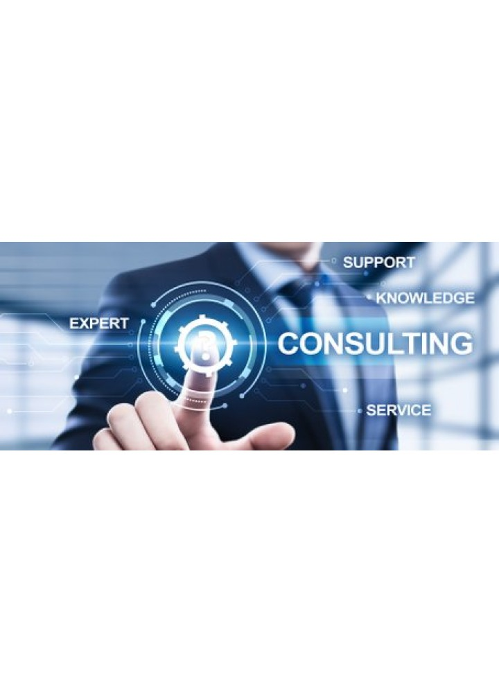 Private Consulting
