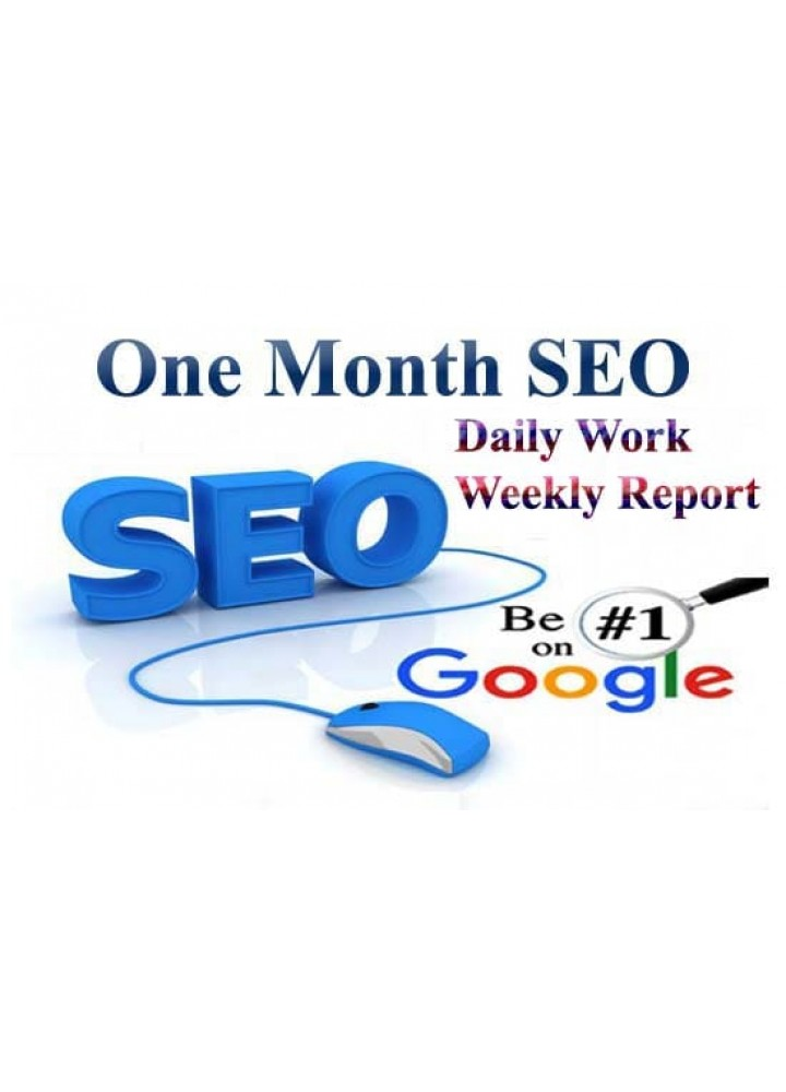 1 Month SEO Basic